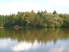 22-lake-martin-img_2678