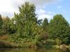 23-lake-martin-img_2679