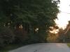 31-street-view-img_2611